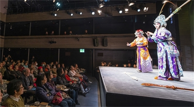 Chinese opera takes centre stage in Kowloon