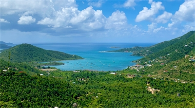 A wave of optimism washes over St. John