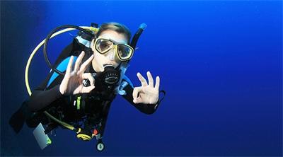 Diving into New Zealand - Top Dive Spots
