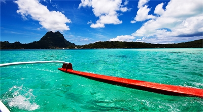 The shark reality of Bora Bora
