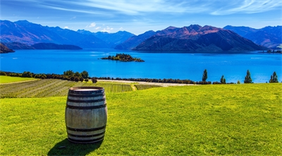 New Zealand's wine routes earn lots of cheers