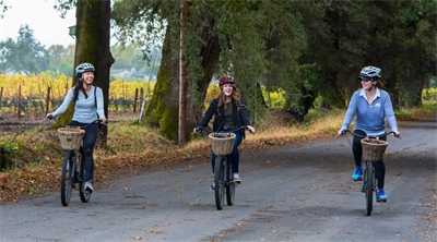 Foodies find fun and fitness in Napa