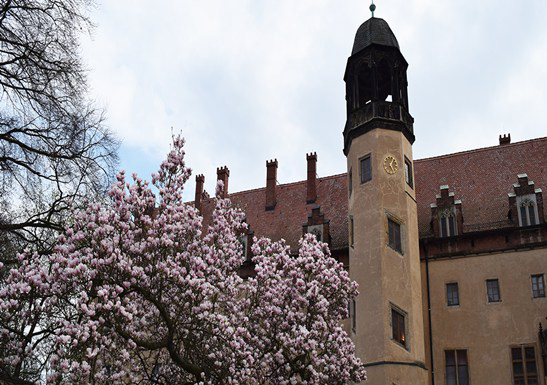Wittenberg changed the religious world