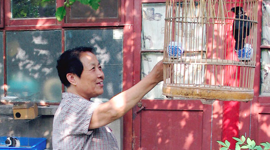 Hutong Owners Open Door to China's Past